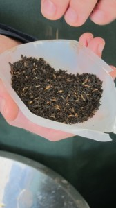 Examination of tea leaves