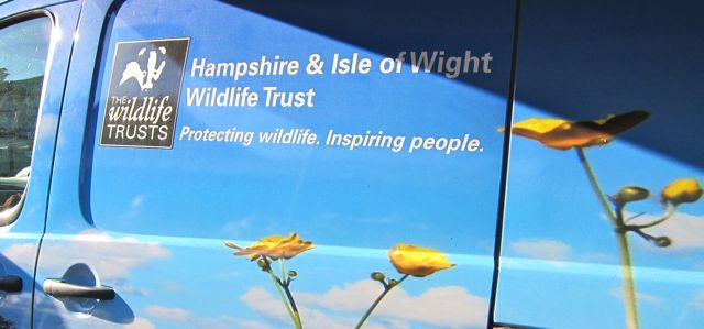 Hampshire and IOW Wildlife