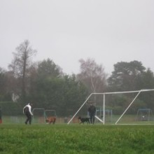Men playing football with dogs at Hiltingbury Rec.