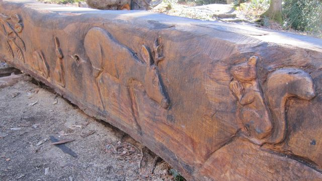 Carved fallen oak by wood sculptor Paul Sivell.