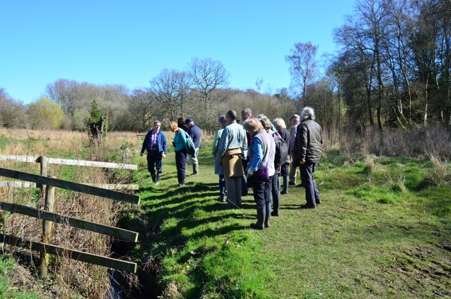 Guided Walk in Hocombe Mead - image by Ian Julian.