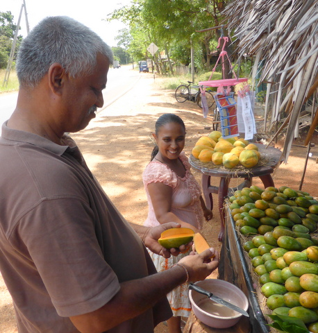 The best mangoes in Sri Lanka.