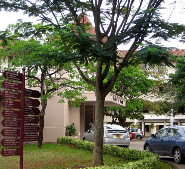 Faculty of Medicine, University of Peradeniya, Sri Lanka