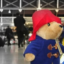 Paddington Bear by Antony Robinson feature