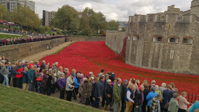 Poppies at the Tower of London 2014: <em>Blood Swept Lands</em> and  </em>Seas of Red</em>.