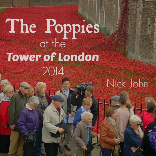 Visiting the poppy artwork installation at the Tower of London.