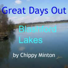 Blashford Lakes New Forest review chippy minton