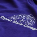 Open Data Camp Winchester 21-22 Feb 2015 Feature. Purple shirt. Image credit: Sasha Taylor.