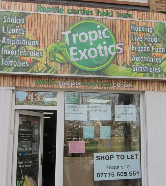 Last day of Tropic Exotics in Eastleigh, Nov 2016.