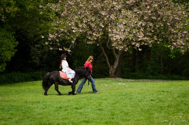 Pony Ride. Image: Alan Fry. Chandler's Ford Fryern Funtasia 4th May 2015.