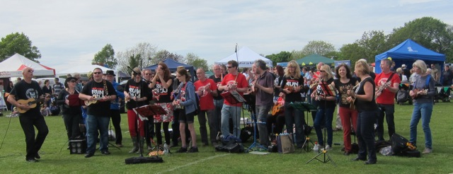 Southampton Ukulele delighted a huge audience at Fryern Funtasia 2015.