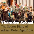Thornden School Adrian Mole feature