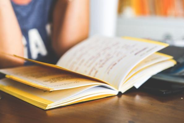 reading a book kaboompics