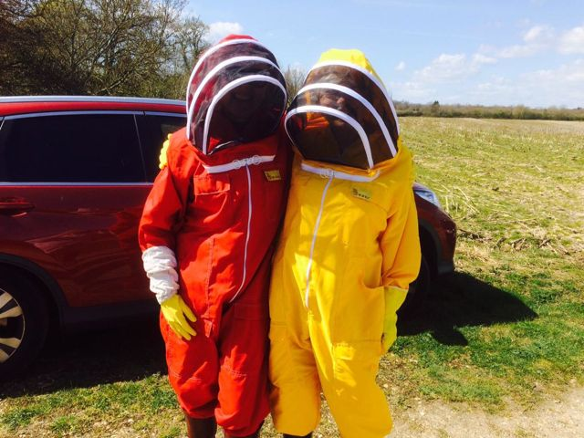 Beekeeper suits are not always white.