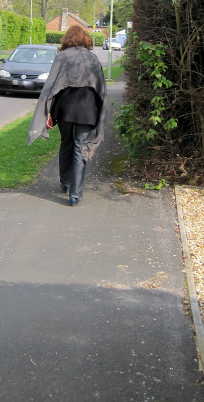 This hedge takes up almost half the pavement.