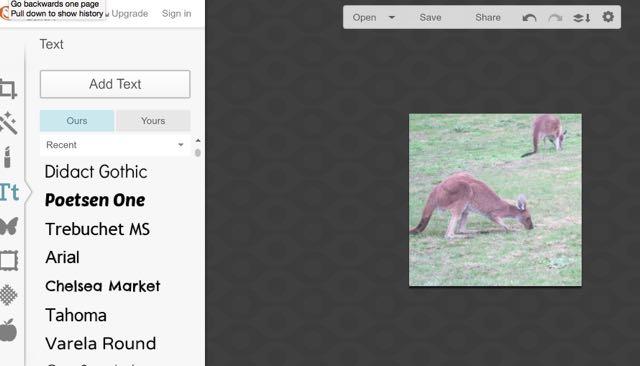 PicMonkey 9a Add a text