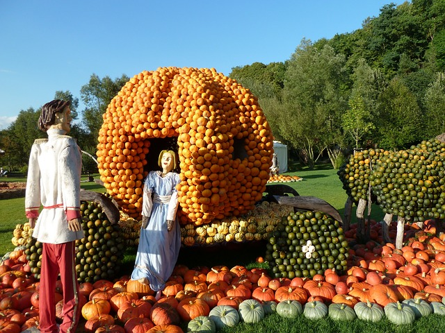 Cinderella with the secret to her success - pumpkins!