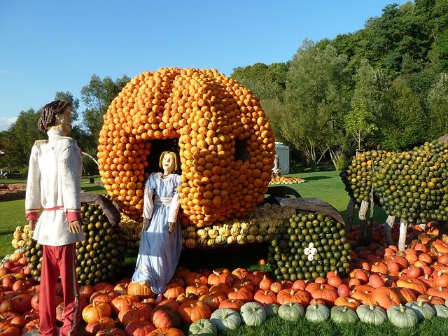 Cinderella with the secret to her success - pumpkins!
