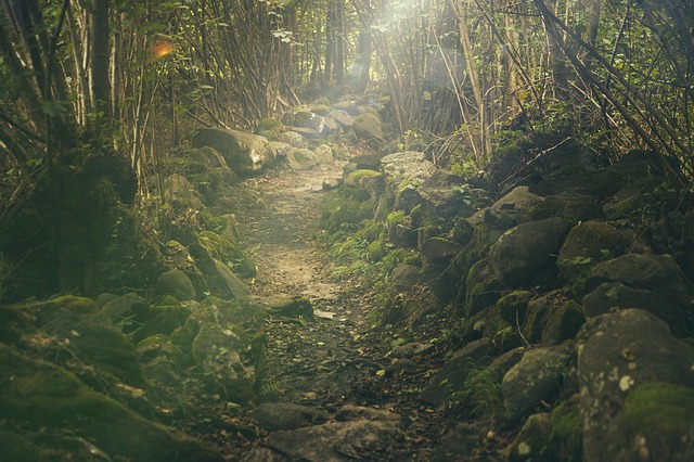 The way to the magical realm... as I see it.