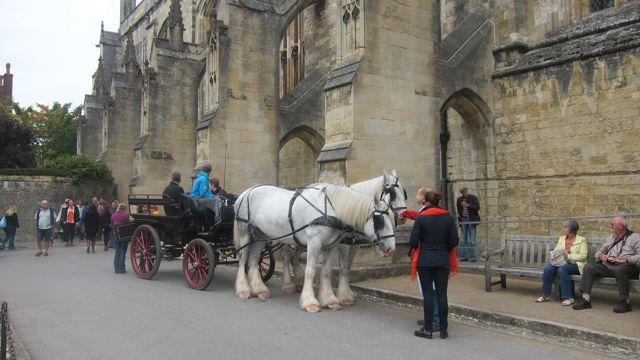 Hampshire Market Winchester 2015 5