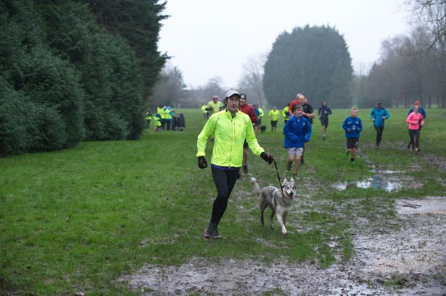 Eastleigh parkrun with dogs. Jan 2016. Image credit: Paul Hammond