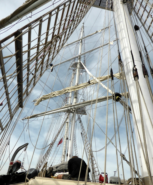 None of those ropes is called a rope. Its all rigging.