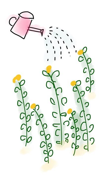 Watering plants. Image by Lam Petite Femme via Pixabay.Watering plants. Image by La Petite Femme via Pixabay.