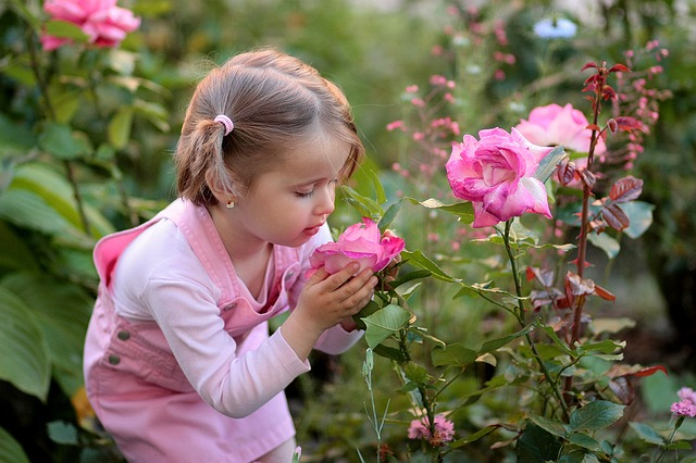 Girl with roses image by AdinaVoicu via Pixabay.