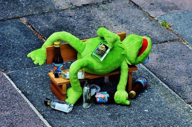 Frog drunk photo by Alexas_Fotos via Pixabay