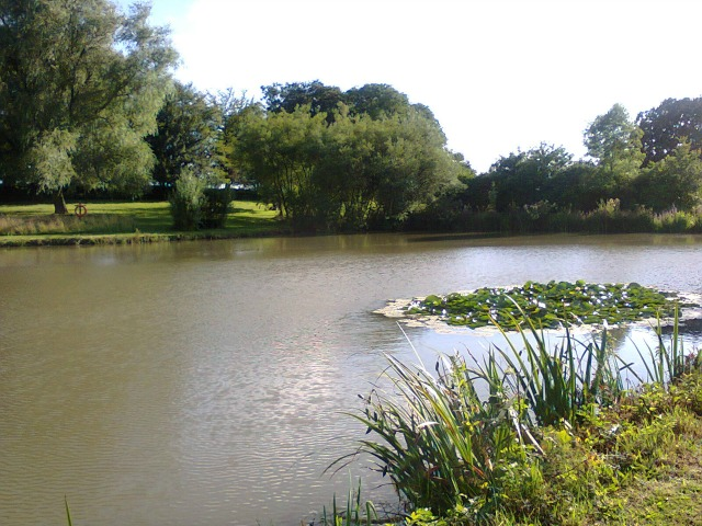 The Lakes At Swanwick