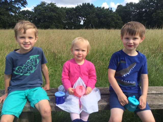 Three great grandchildren of Frank: (left to right) 6-year-old Joshua, Sophia (nearly 2), and Jack aged 4.