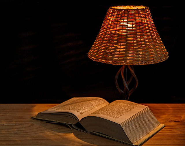 You can't beat a good read and Jane Austen would, in my view, be a great starting point. Image via Pixabay