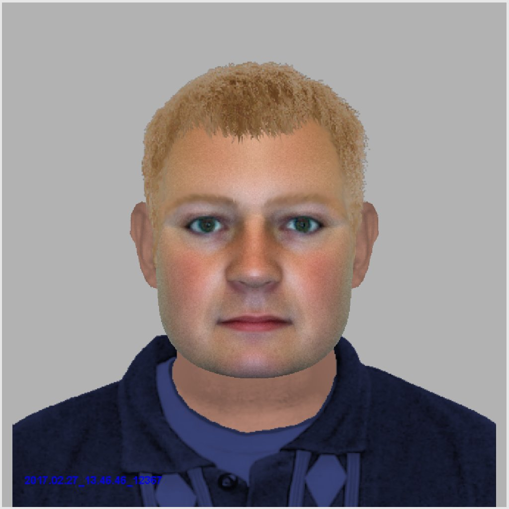 efit man Chandler's Ford - Hampshire Constabulary
