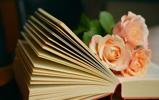 The Joy of Reading - image via Pixabay