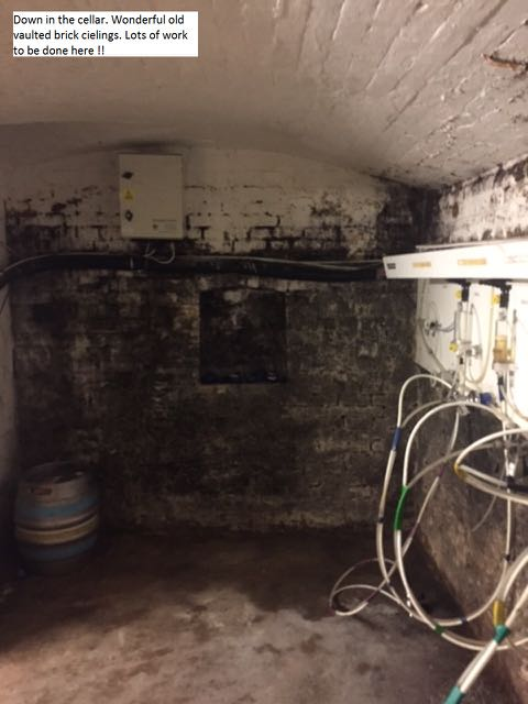 Down in the cellar. Wonderful old vaulted brick ceilings. Lots of work to be done here. Hiltonbury Farmhouse