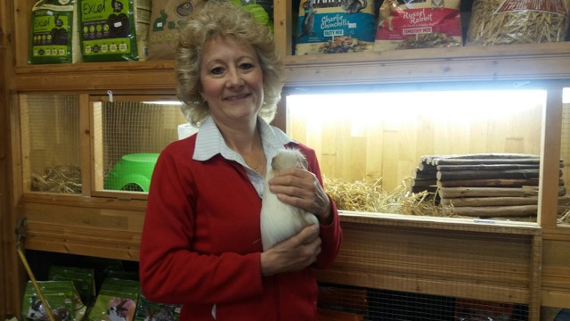 Janet and a GPig! image at Nightingale Pets Eastleigh SO50