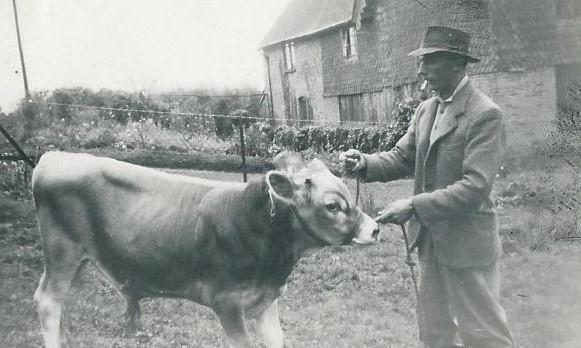John Vining with Hursley Imp. The start of the Hiltonbury Jerseys.