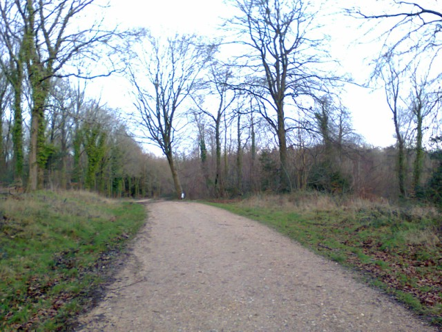 Typical of the main track at Jermyns Lane