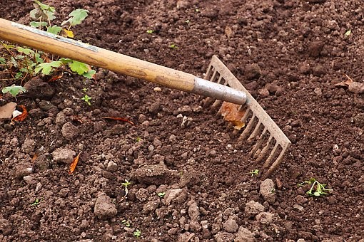 Raking the soil - image via Pixabay