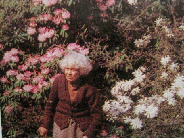 Mrs Doncaster in her garden. (Image taken from The Garden, Journal of the Royal Horticultural Society, January 1982.)