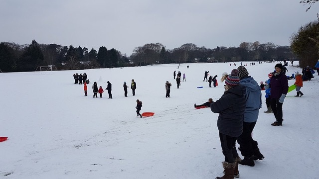Snow day in Hiltingbury
