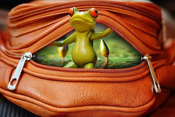 Part 5 - Zips are not of the quality they used to be though I have not yet found a frog in mine