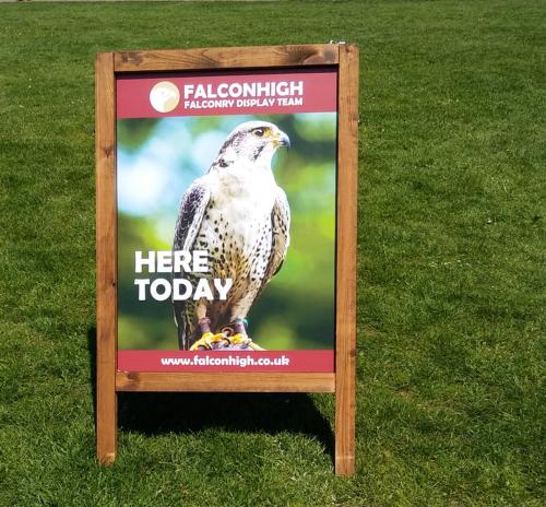 The Falcon High Sign