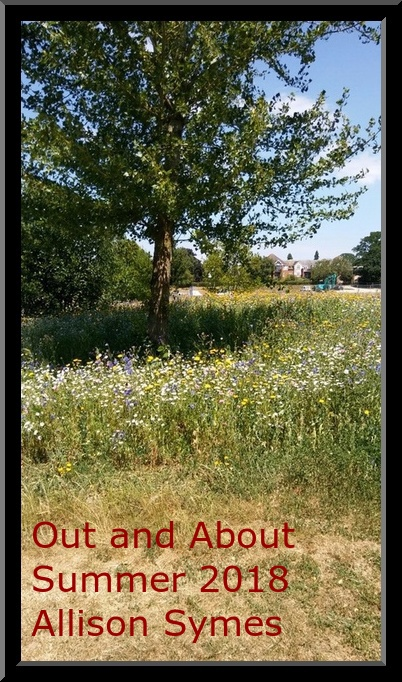 Feature Image - Out and About Summer 2018