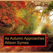Feature Image - As Autumn Approaches - Pixabay