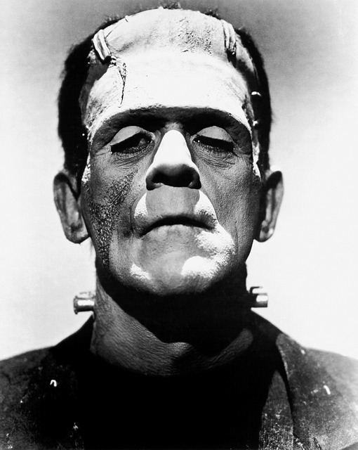 Frankenstein could share his thoughts on looks! Pixabay image (I used this in my book trailer)