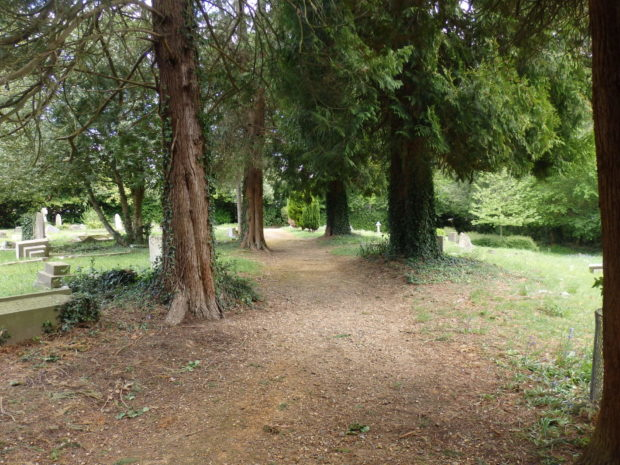 Path at Pine Road Cemetery