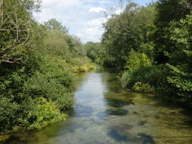 River near Ovington