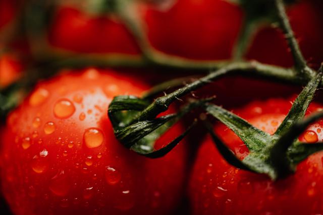 kaboompics_Cherry tomatoes