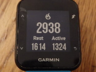 Calorie count on fitness watch